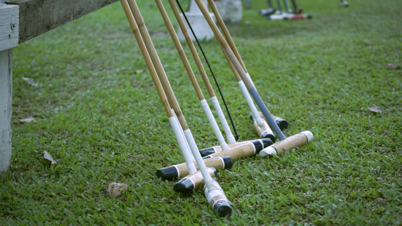 <frame grab from video> Mallets for hitting the ball with, not the horse! — at Royal Selangor Polo Club