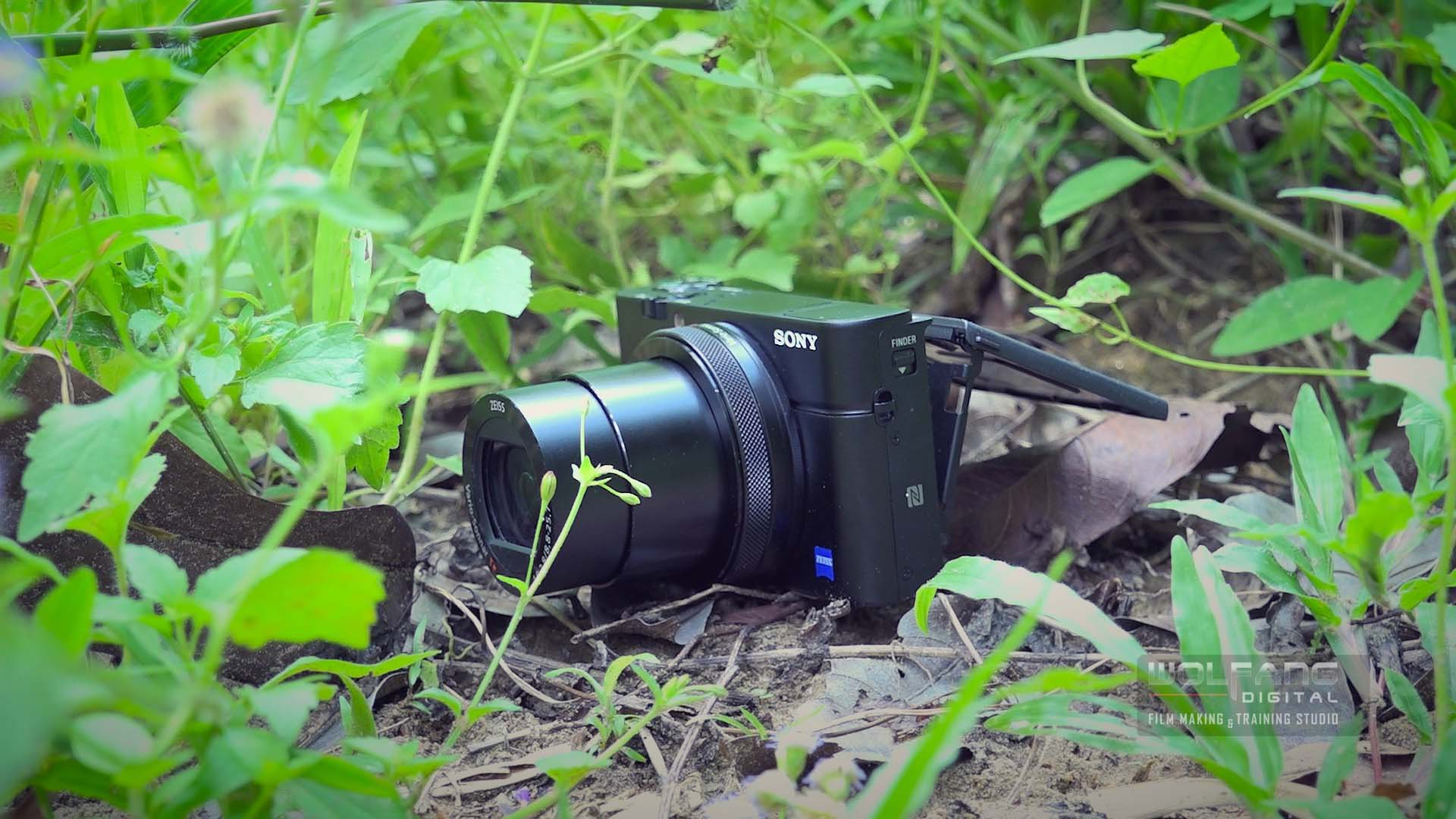 The Sony RX100 IV produced beautiful slow motion videos using the HFR mode.