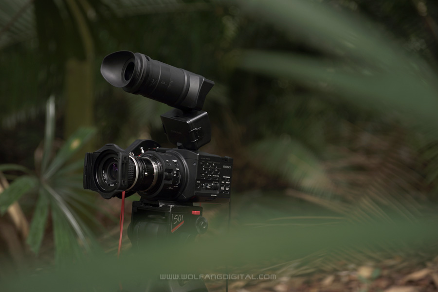 The NEX-FS100 is a popular choice with independent film makers. Now there's the A99 to complement it.