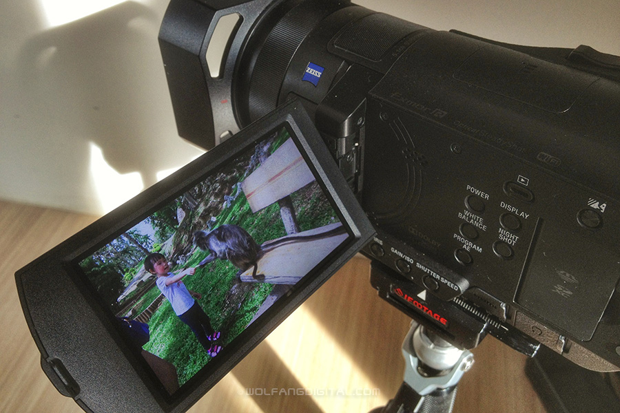 Sony AX100 mounted on iFootage stabilizer ready to film in 4K