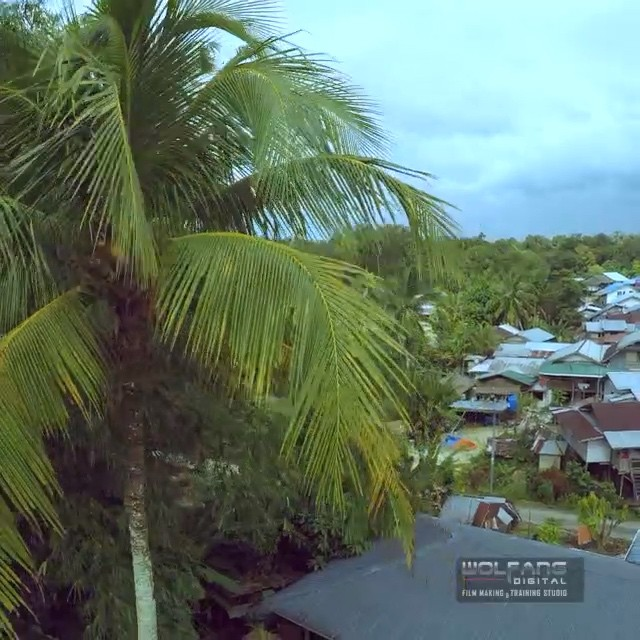 Explored this remote 'kampung' village near the jungle. It was one big longhouse until a fire destroyed everything. They rebuilt and chose individual huts instead just to be safe #drone #documentary #filmmaking #dronelife #aerials #aerialvideo #dronoftheday #gopro #goprohero4 #malaysia #kampung #borneo