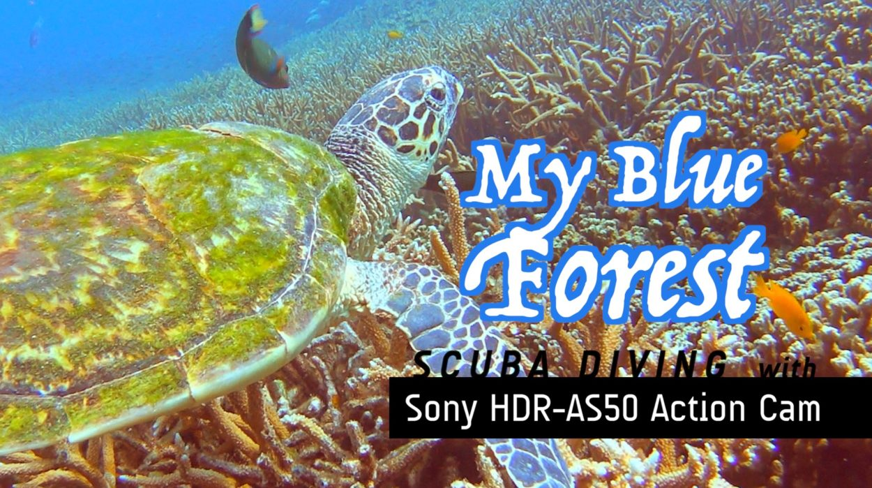 My Blue Forest Scuba diving video by Baron Abas with Action Cam AS50