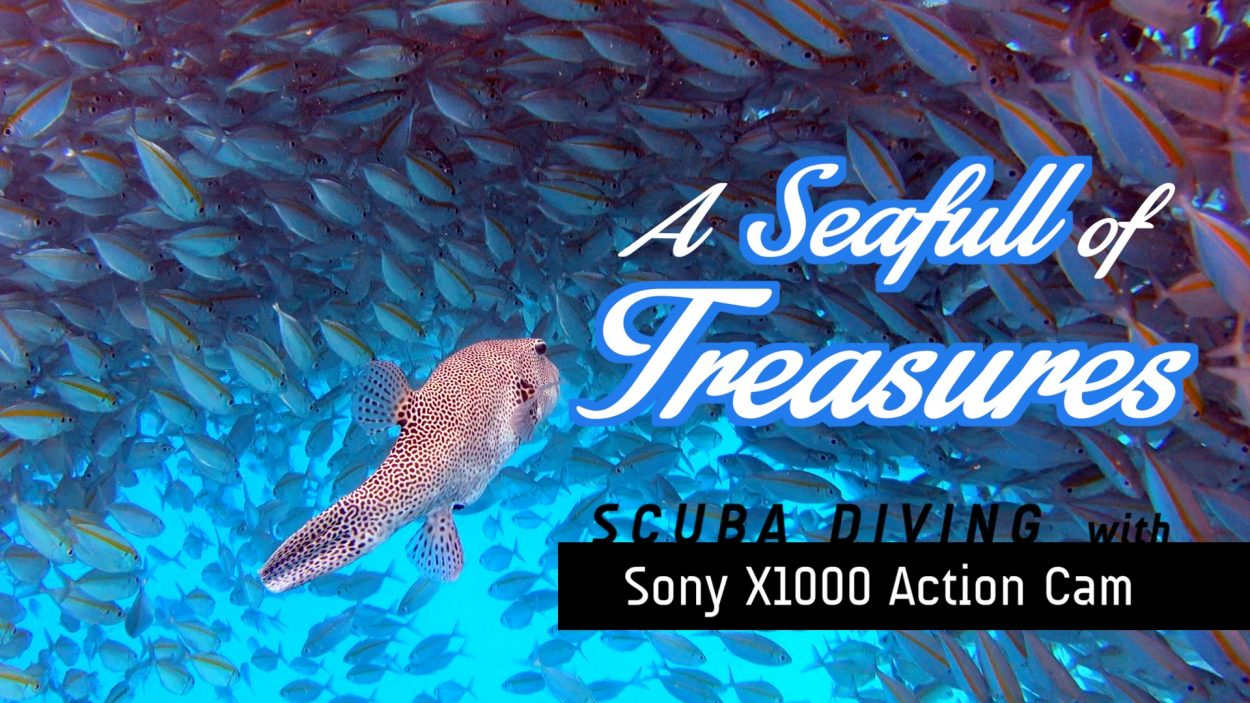 Seafull of Treasures- Scuba Diving Adventure with Sony Action Cam X1000