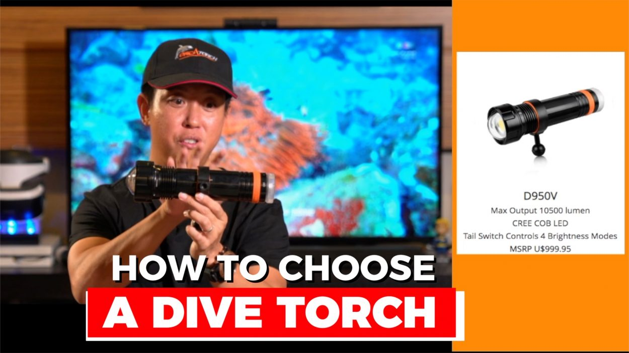 How to choose a dive torch for underwater video by Baron Abas, WolFang Digital