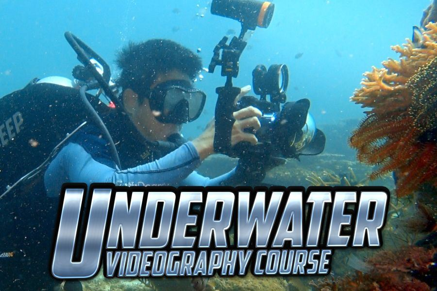 Scuba Diving underwater video course by WolFang Digital